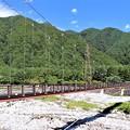 Photos: こまくさ吊り橋