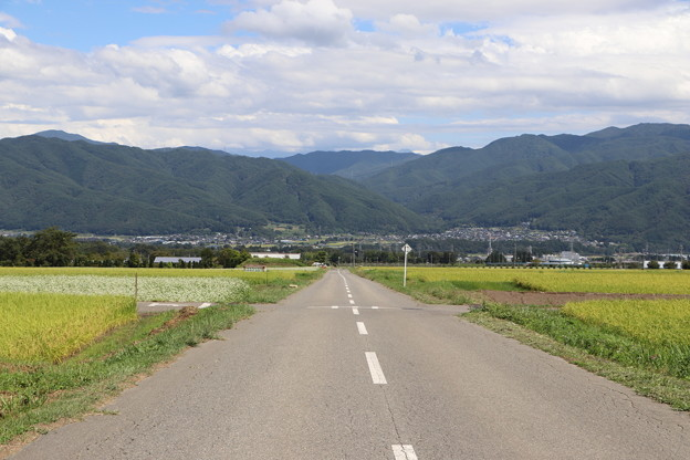 「上古田地区」の県道与地辰野線の道路