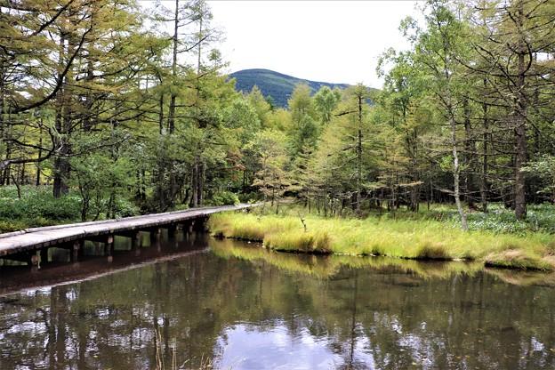 御泉水池と蓼科山