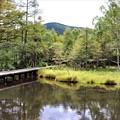 Photos: 御泉水池と蓼科山