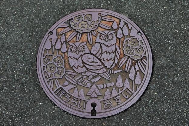 愛知県新城市鳳来町(旧・南設楽郡)マンホール