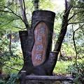 Photos: 葦毛湿原木碑