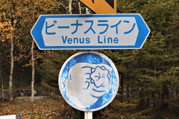 ビーナスライン標