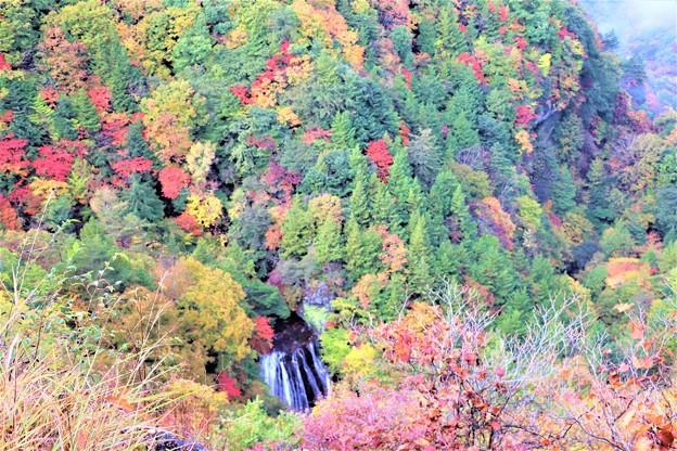 横谷渓谷の横谷王滝を望む