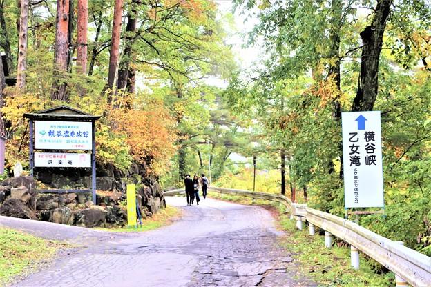 横谷峡乙女滝散策道路