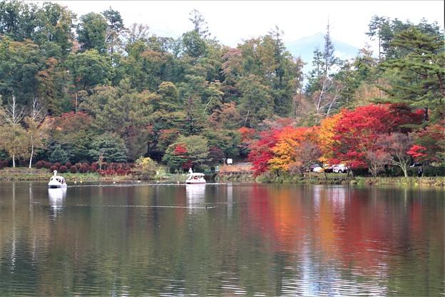秋の蓼科湖