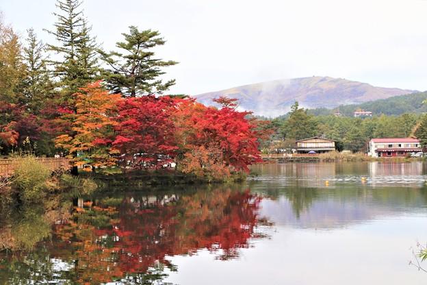 車山を背にした蓼科湖の紅葉