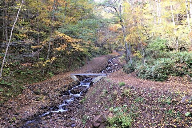 八岳の滝散策路
