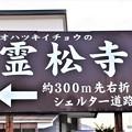 Photos: オハツキイチョウの霊松寺案内