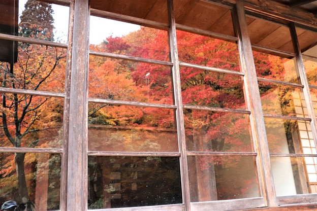 Photos: 庫裏のガラス戸にも紅葉