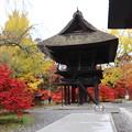 Photos: 県宝の山門と境内