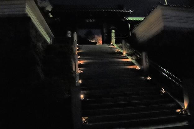 仄かな灯籠の参道階段