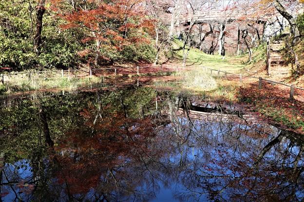 池に映し出す太鼓橋と紅葉