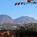 Photos: 二の丸跡からの浅間山