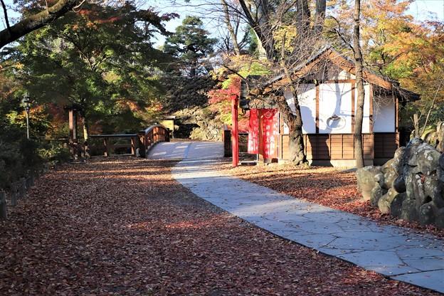 落葉の散策路