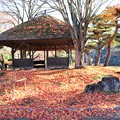 落葉の東屋