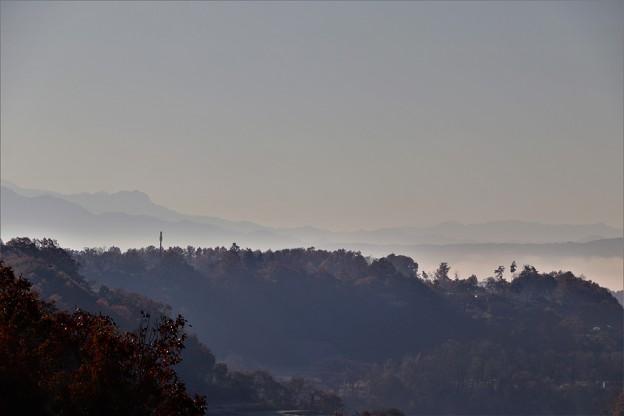 霞で富士山見えず