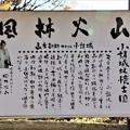 Photos: 風林火山の山本勘助