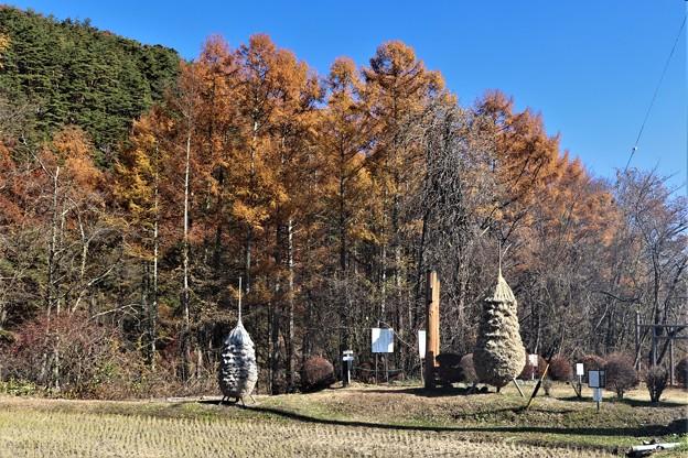 Photos: 自然の里待月壇