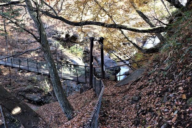 多留姫の滝見物路