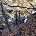 Photos: 多留姫の滝見物路