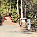 大洞院表参道