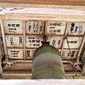 鐘楼天井に千社札