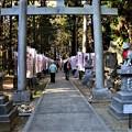 Photos: 狐塚参道