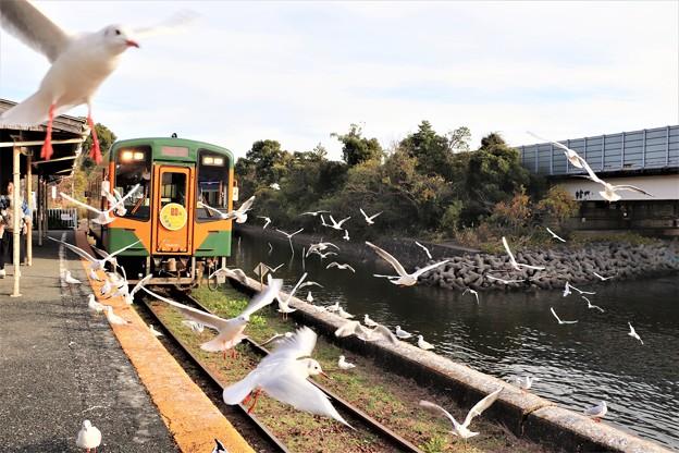 電車に群れ飛ぶ