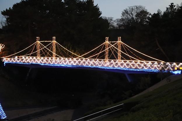 吊り橋イルミネーション