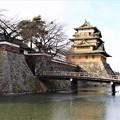 Photos: 高島城本丸