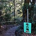 Photos: 牛の滝入口