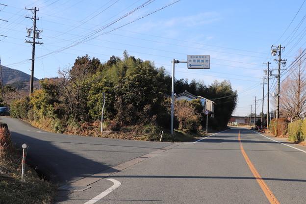 愛知県道81号線沿い