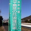 Photos: 日本風景街道「渥美半島菜の花浪漫街道」幟