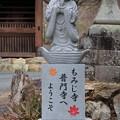 Photos: 普門寺歓迎