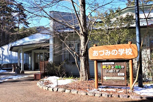 Photos: あづみの学校