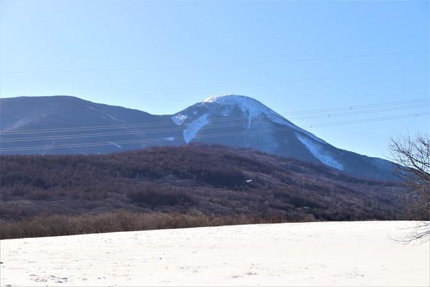 雪の牧場より蓼科山