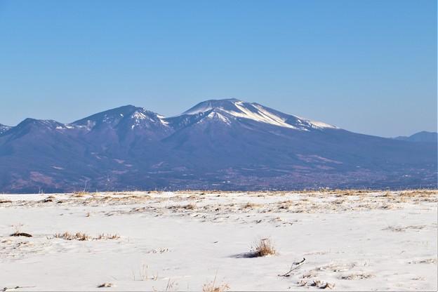 雪の牧場と浅間山