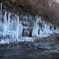 Photos: 鹿曲川沿い約250mの氷柱群