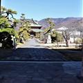 Photos: 山門より参道