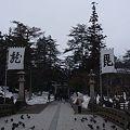 Photos: 上杉神社 龍毘