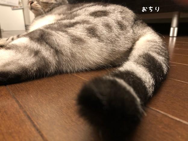 Photos: IMG_6163