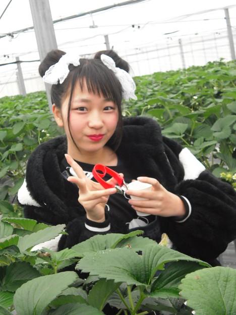 Photos: あゆり~♪