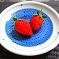 Photos: 今年の苺