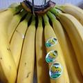 Photos: バナナひと房買い