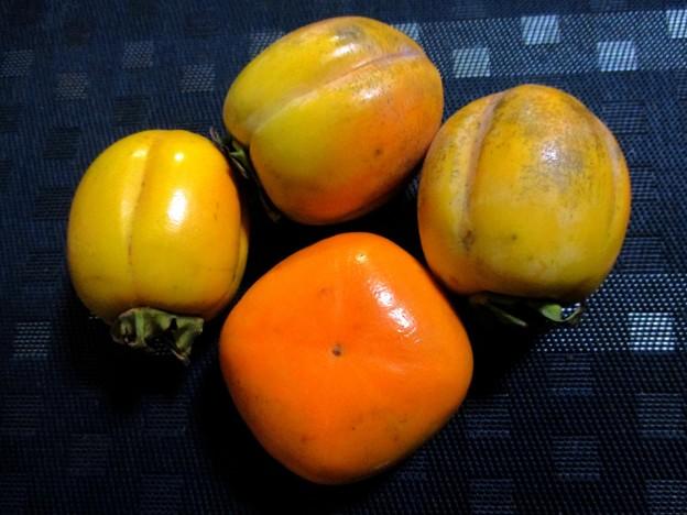 柿と柿と柿と柿