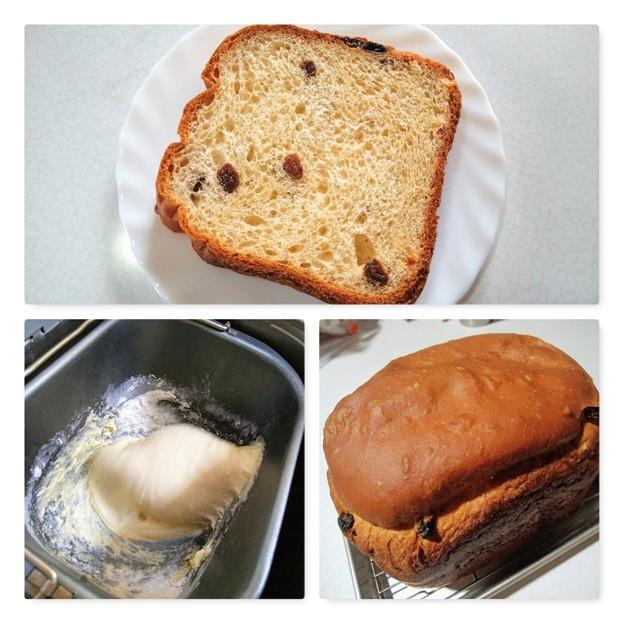 自家製レーズン食パン