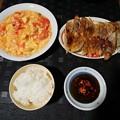 西紅柿炒蛋と鍋貼