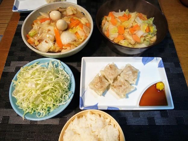 白菜と人参多目