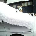 Photos: 強い寒波で数年振りのまとまった雪